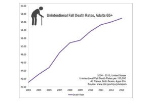 Senior Fall statistics